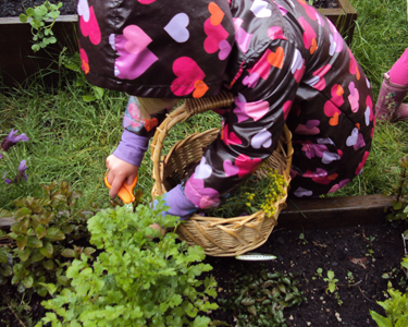 learning-through-gardening